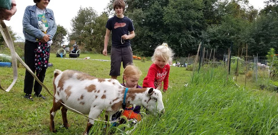Beechview Community Harvest Festival – Goats and Tacos and Facepainting, Oh my!